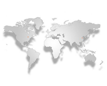 International Company Serving The Global Marketplace